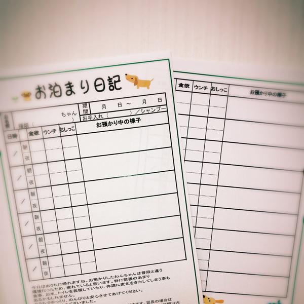 ドックホテルのお預かり中の様子をが書いたお泊まり日記の写真